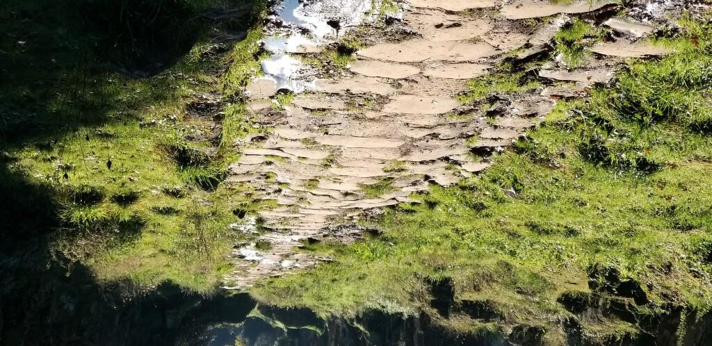 DOMENICA 10/1- Archeotrekking- Sulle tracce della Via Amerina dal Castello di Isola alla Necropoli del Cavo degli Zucchi ( VT).