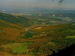 Parco Selva di Meana