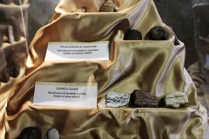 valentano-museo-della-preistoria-tavolette-enigmatiche