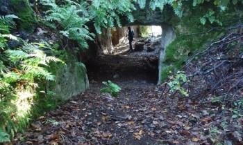 DOMENICA 24/2- Archeotrekking- Un antico castello scomparso: Pizzoiella (VT)