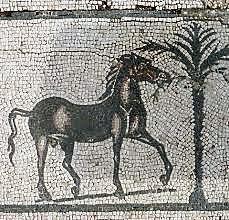 VILLA VOLUSII LUCUS FERONIAE (13)