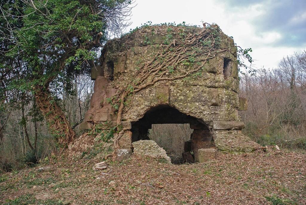Domenica 8/11- Archeotrekking- ALLA SCOPERTA DELLE MAGNIFICHE NECROPOLI DELL'ANTICA CITTA' ETRUSCA DI PHLERA (VT).