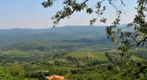 Monti Tolfa (5)