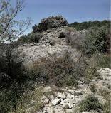 Monti Tolfa